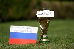 Troféu 2018 do campeonato do mundo Imagem de Stock Royalty Free