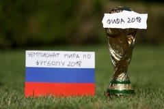 Troféu 2018 do campeonato do mundo Imagem de Stock
