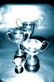 Troféus Imagens de Stock Royalty Free