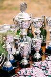 Troféus do campeão Copos dos vencedores trophy Foto de Stock Royalty Free