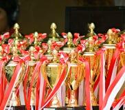 Trofeeën bij een sportengebeurtenis Royalty-vrije Stock Afbeeldingen