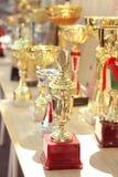 Trofeeën voor het winnen Royalty-vrije Stock Fotografie