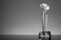 Trofee Royalty-vrije Stock Fotografie