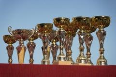 Trofei per il vincitore sul cielo Fotografie Stock