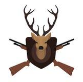 Trofeo de la caza Cabeza rellena de los ciervos de la taxidermia Imagen de archivo libre de regalías