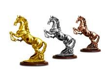 Trofeo del caballo imagen de archivo libre de regalías