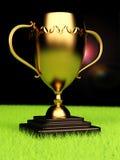 Trofeo del ganador Imágenes de archivo libres de regalías