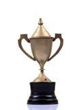 Trofeo del metal imágenes de archivo libres de regalías