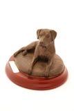Trofeo del perro foto de archivo