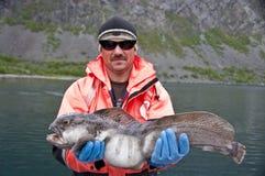 Trofeo di pesca - pesce gatto fotografie stock libere da diritti