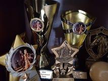 trofeos Fotos de archivo