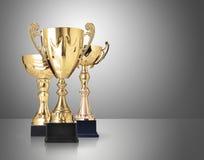 Trofeos de oro Foto de archivo libre de regalías