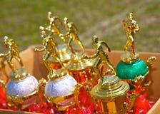Trofeos en una caja Imagen de archivo libre de regalías