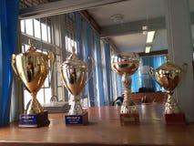 Trofeos nacionales del agua que atestiguan el gran éxito de la sociedad imágenes de archivo libres de regalías