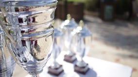 Trofeum nagrody dla mistrza przywódctwo w turnieju, ceremonia sukces dla zwycięstwo nagród zbiory wideo