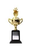 Trofeum złote nagrody Fotografia Royalty Free