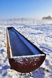 Trog die met bevroren water wordt gevuld Royalty-vrije Stock Afbeeldingen