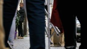 Trogen bedrövlig hund som ligger på trottoaren och den väntande ägaren Benen av likgiltigt folk för folkmassan förbigår arkivfilmer