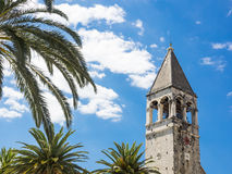 Trogir, Croatia: Dominican monastery and palm trees Royalty Free Stock Photo