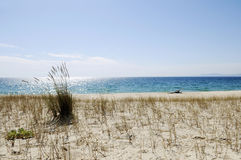 Troia Peninsula Deserted Beach Stock Image