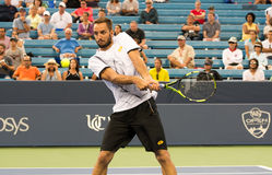 Troicki 100 Stock Photo