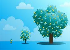 Trois étapes de croissance d'un arbre monétaire Photos stock