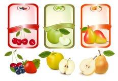Trois étiquettes avec des baies et des fruits. Images stock