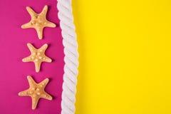 Trois étoiles de mer et mers rope sur les milieux colorés avec le negati Photo stock