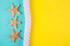 Trois étoiles de mer et mers rope sur les milieux colorés avec le negati Photos stock