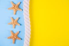 Trois étoiles de mer et mers rope sur les milieux colorés avec le negati Images stock