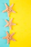 Trois étoiles de mer sur la menthe colorée et les milieux jaunes avec le négatif Photo stock