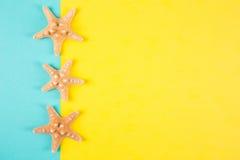 Trois étoiles de mer sur la menthe colorée et les milieux jaunes avec le négatif Photographie stock