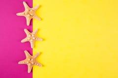 Trois étoiles de mer sur les milieux colorés de jaune et de cramoisi avec Images libres de droits