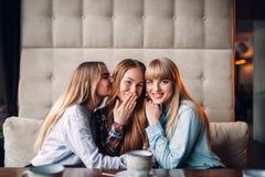 Trois étreintes attrayantes d'amies ensemble en café Photographie stock