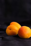Trois abricots frais dans les plis d'un fond en soie bleu-foncé Variété de Farteli, développée en Espagne Foyer sélectif vertical Images stock