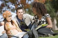 Trois amis étudiant ensemble Photo libre de droits