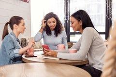 Trois amis attirants appréciant le thé Photographie stock