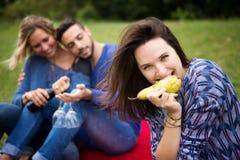 Trois amis au pique-nique et à la femme mangeant la poire Images libres de droits