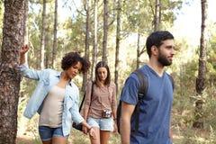 Trois amis ayant de l'amusement de forêt Image libre de droits
