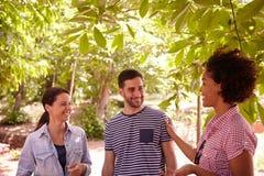 Trois amis en bonne santé riant et causant Image libre de droits
