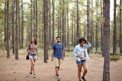 Trois amis errant par une forêt Photo stock