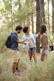 Trois amis inquiétés dans une forêt Photos stock