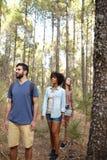 Trois amis marchant par une forêt Images libres de droits