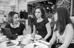 Trois amis parlant dans un café travaillant sur un ordinateur portable et mangeant des gâteaux noirs et blancs Photos libres de droits