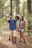 Trois amis prenant des selfies de forêt de pin Photos libres de droits
