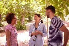 Trois amis riant de quelques plaisanteries Image libre de droits