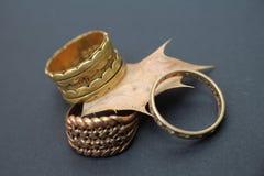 Trois anneaux sur Holly Leaf Photos libres de droits