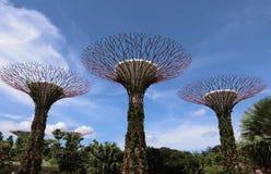 Trois arbres superbes images stock