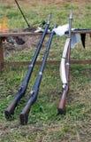 Trois armes à feu Photographie stock libre de droits