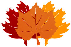 Trois Autumn Leaves Images stock